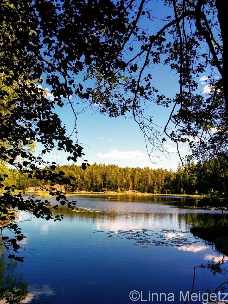 ヌークシオ国立公園の池