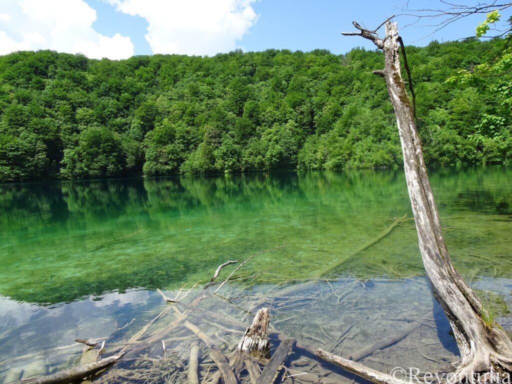 透明度の高いGalovac湖