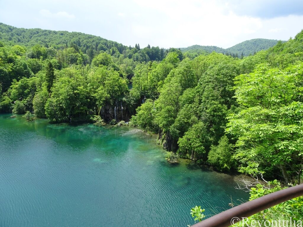 青い水の色と輝く新緑