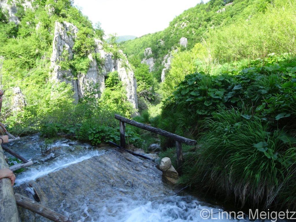 遊歩道のすぐ近くを流れる川