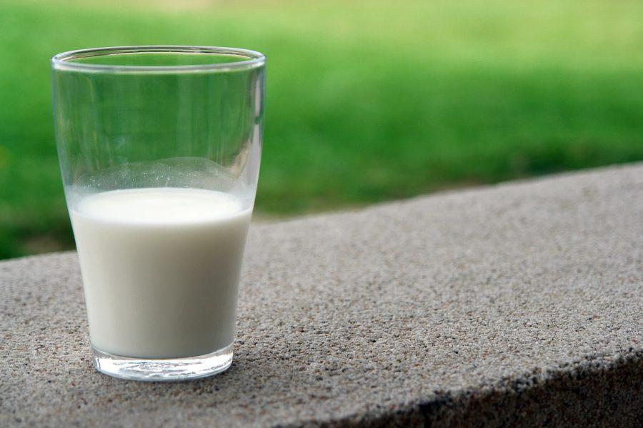 グラス一杯の牛乳の写真