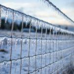 凍り付いた柵の写真