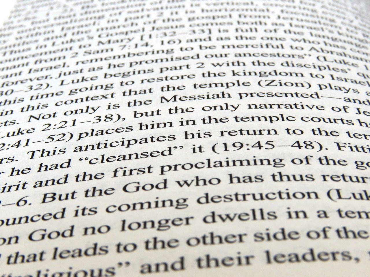 英語の文章の写真