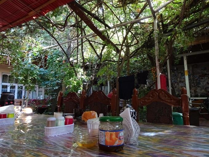 サマルカンドのゲストハウス・Bahodirの写真