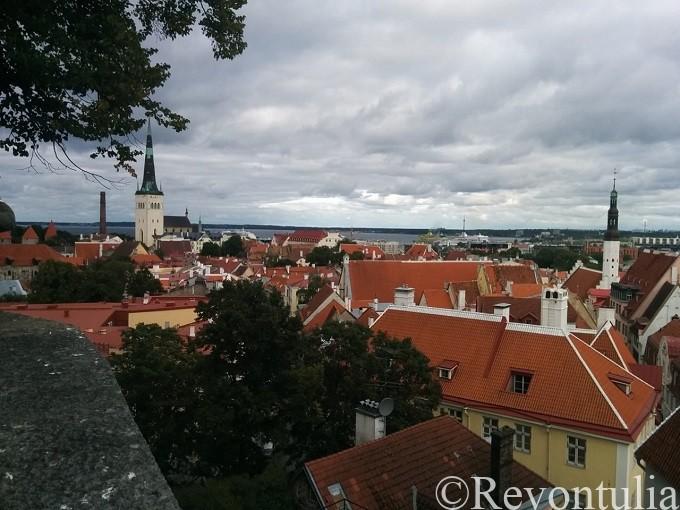 エストニアのタリンの旧市街を一望。
