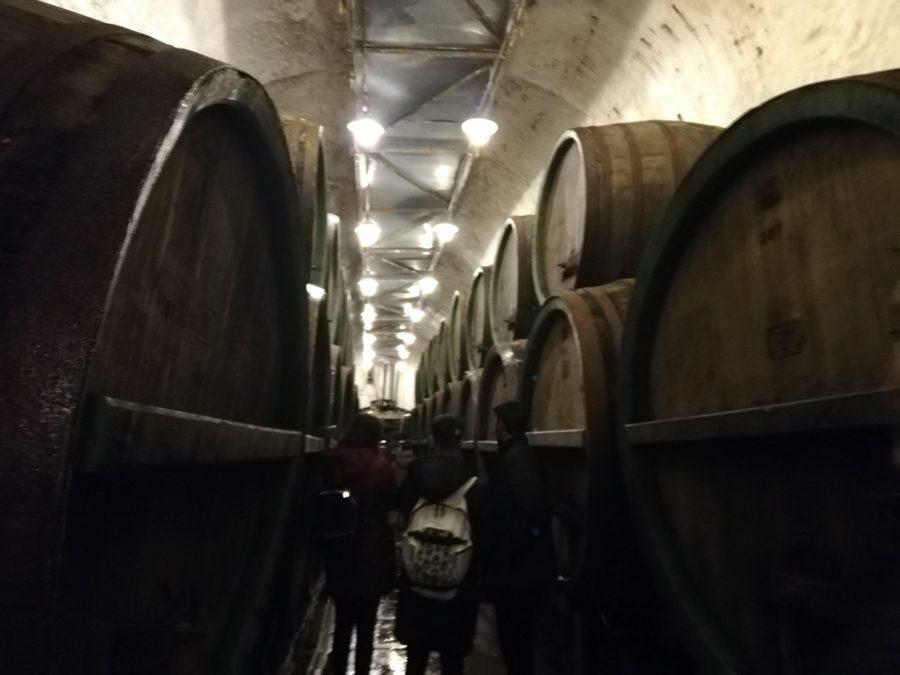 ピルスナーウルケル醸造所の地下に積みあがった樽