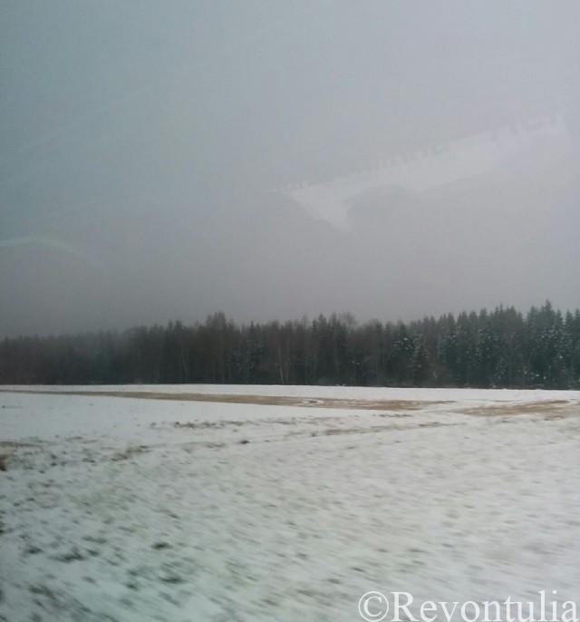 フィンランドのバスの車窓からの風景
