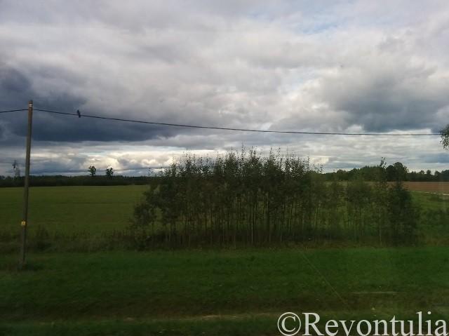 エストニアのタリン~タルトゥ間の風景の写真