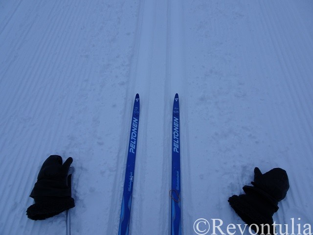 スキー板と手袋の写真