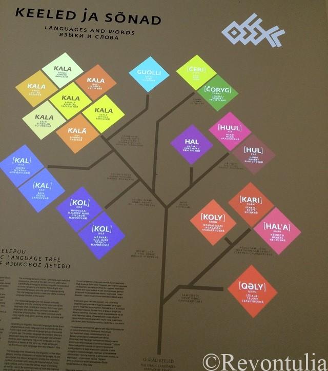 エストニア国立博物館のウラル語の系統樹