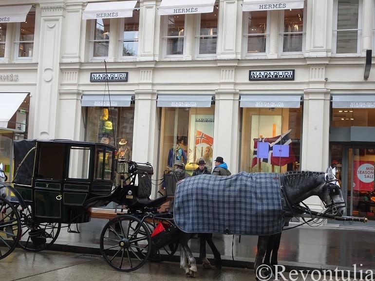ウィーンの旧市街でみた馬車